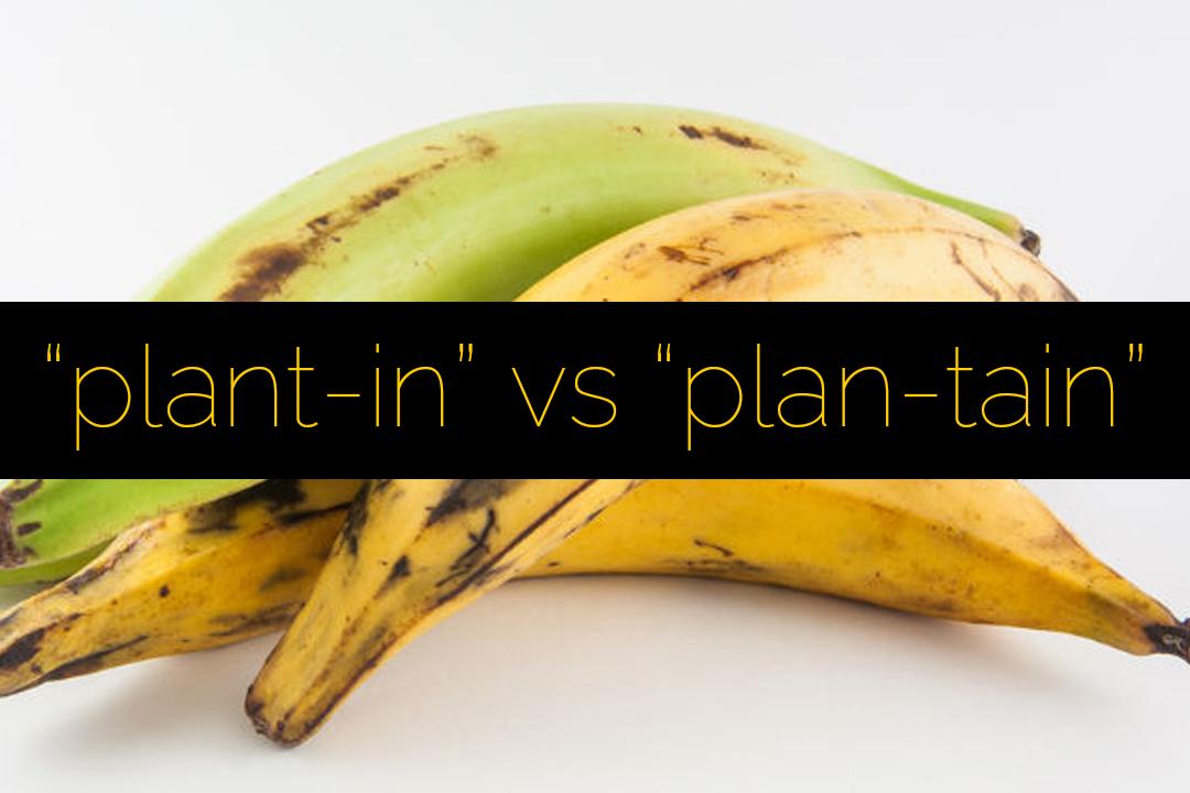 Plantain vs Plantain